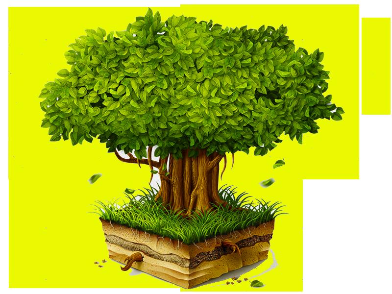 Уход за садом,обрезка дерева,садовые работы,садовник московская область,услуги садовника,Услуги Озеленения,Покос гахона,посадка деревьев,посадка деревьев и уход,посадка ели,посадка хвойников,посадка плодовых,посадка яблони,посадка груши,посадка сливы,посадка туи,посадка крупномеров,садовый питомник,садовые деревья,