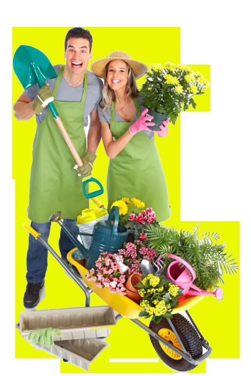 уходные работы,садовники,садоводы,садовод и огородник,Озеленение в Одинцово,Озеленение Трёхгорка,Озеленение коттеджного посёлка,уход за участком,уход за дачей,садовые работы,