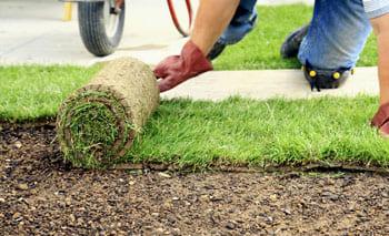 Укладка газона, услуги садовника в Подмосковье