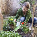 Вакансии садовницы, услуги садовника в Подмосковье