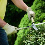 вакансии садовника, услуги садовника в Подмосковье